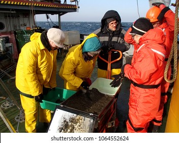 The Sea of Japan / Russia - November 30 2013: Scientists processing the sample of deepwater mud catched with the box core
