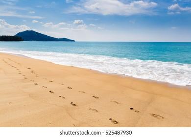 Sea landscape, the beach, trace on sand