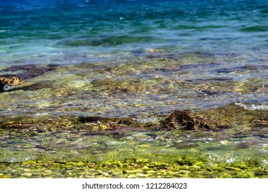 sea landscape of a coastal part with a stony bottom closeup for an abstract natural background