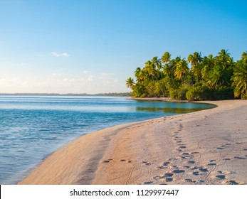 sea and landscape on Fakarava atoll, Tuamotus archipelago, French Polynesia, France,south pacific