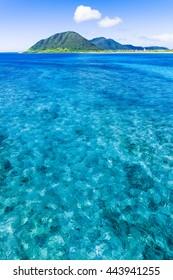 Sea, landscape, seascape. Okinawa, Japan, Asia.