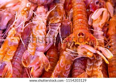 Sea Mantis For Sale At A Venice Fish Market