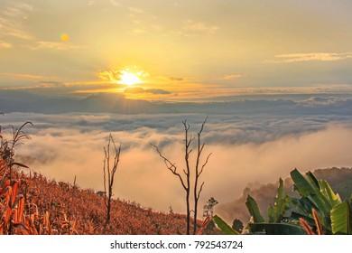 Sea Mist in the Mountains, Mae Chaem Chiang Mai, Thailand
