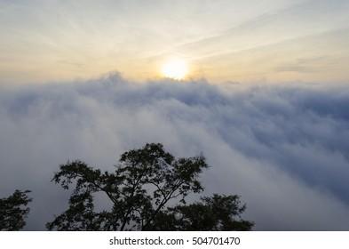 Sea of mist, mist at sunrise, PHA MOR E DANG in Thailand