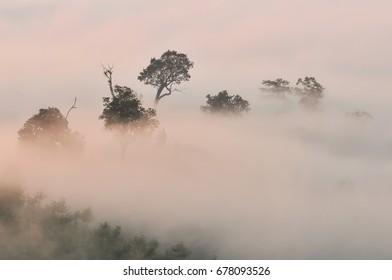 Sea of mist and sunrise at yun lai view point ,pai , mae hong son, Thailand