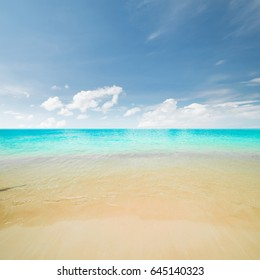 Sea morning panorama. Tropical composition