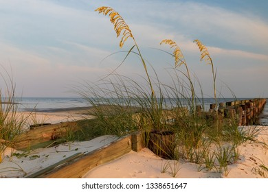 Sea oats on the beach with old wooden pier and  ocean in background at sunset