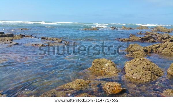 sea ocean beach