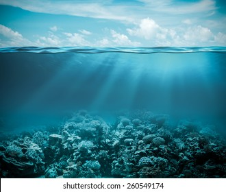 Sea or ocean underwater deep nature background