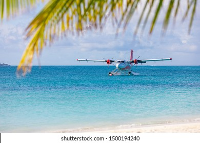 Sea plane at tropical beach resort. Luxury summer travel destination with seaplane in Maldives islands. Exotic vacation or holiday transportation, Maldives sea