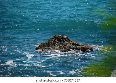 Sea reef