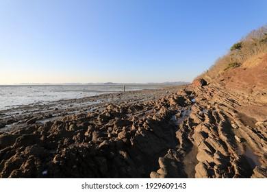 Sea rocks and mud flat at low tide at Ansan-si, South Korea