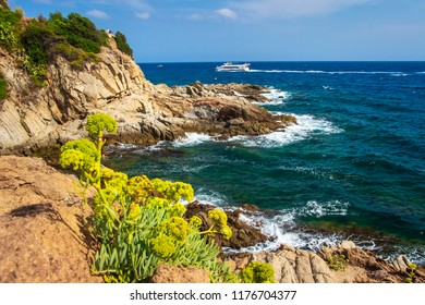 Sea and rocky coastline in Lloret de Mar on sunny summer day. Spanish seascape in Costa Brava. Mediterranean sea in rocky bay of Lloret de Mar, Spain. Landscape of sea and stones on beach
