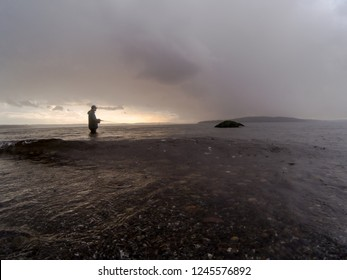 Sea Run Cutthroat Trout Fly Fishing In The Puget Sound