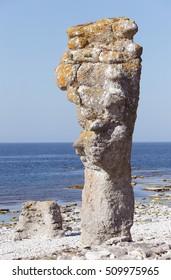 Sea sack at Langhammars on Faro island in the Swedish province of Gotland..