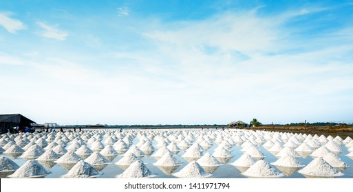 Sea salt farm and barn in Thailand. Raw material of salt industrial. Sodium Chloride. Solar evaporation system. Iodine source. Worker working in farm on sunny day with blue sky. Agriculture industry.