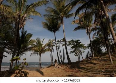 Sea at San Jose, Costa Rica