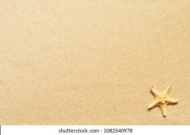Sea sand with starfish. Top view with copy space. Summer background.