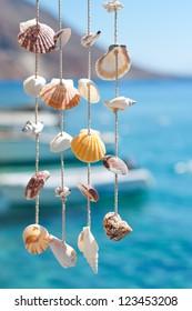 sea shell decoration