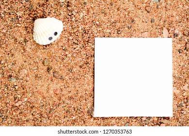 Sea shell with googly eyes, lie on the sand and look at white paper for copy space. Close-up macro.