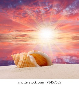 Sea shell on the beach and beautiful sunset over a tropical sea. Happy holidays concept.