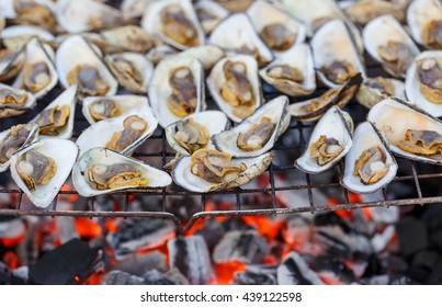 sea shell seafood grilled by fire and BBQ Flames.