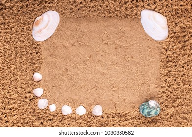 Sea shells on the background of sand. Summer beach.
