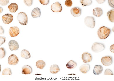 Sea shells on a blank (white) background, arranged on corners, with a copy space in the center. Top view.