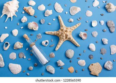 Sea shells on a blue background. Summer concept. Flat Lay, top view, copy space.