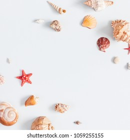 Sea shells on gray background. Summer concept. Flat lay, top view, square, copy space
