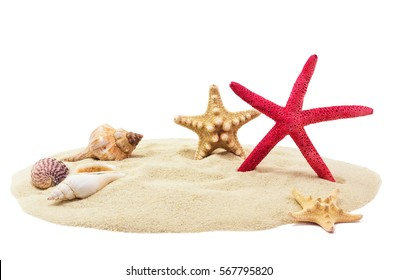 Sea shells and sand, isolated on white background
