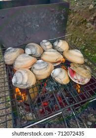 Sea shells Spisula sachalinensis are cooked on fire barbecue