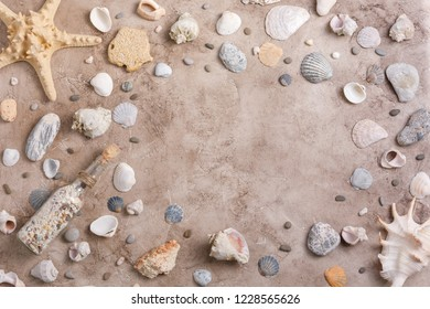 Sea shells in starfish on a textural background. The concept of flat lay. Place under your text.