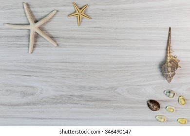 Sea shells and starfish on wooden background.