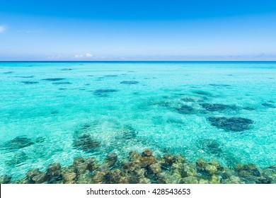 Sea, shore, landscape. Okinawa, Japan, Asia.