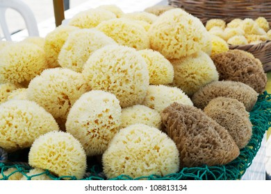 Sea sponges for sale at a market
