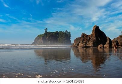 Sea stacks along beautiful Ruby Beach, WA