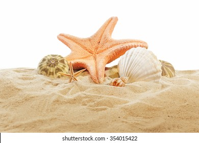 Sea star and shells on sand isolated on white background