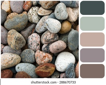 Sea stones background  texture, garden pile of pebbles, background colour palette with color swatch