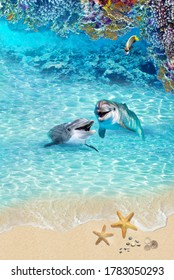 Sea summer background. Top view. Image with dolphin and corals for 3d Collage.