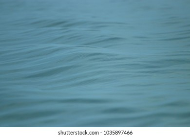 Sea surface is the background.