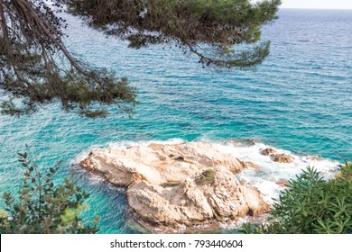 The sea through the green branches of pine. Lloret de Mar, Costa Brava, Catalonia, Spain.