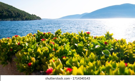 Sea tropical landscape with mountains. Vacation holiday travel concept - Bay of Kotor, Montenegro, Europe.