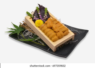 Sea urchin roe in wooden tray Japanese style on black plate and white background (Uni sushi or sashimi ingredients)
