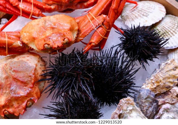 Sea Urchins Sharp Spines Seafood Sale Stock Photo (Edit Now) 1229013520