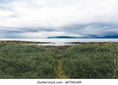Sea view with a Grass Path in Reykjavik, Iceland with Clouds and Blue Mountains
