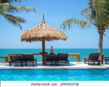 Sea view Terrace, Sunbeds under The Straw Umbrellas with Coconut Palm Trees and Swimming Pool on Blue Sky Background, Summer Concept