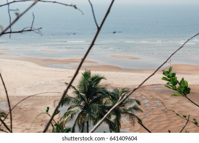 Sea view through the trees. Tropical island landscape.