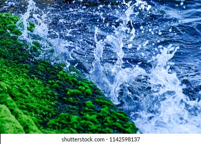 The sea wave crashing on the rock and make the splashing water and white air foam bubble.