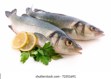 Seabass fish, Dicentrarchus labrax with herbs isolated on white background
